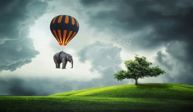 elephant-3458033_1280